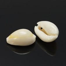 5 Breloques Coquillage Naturel pour la Création de Bijoux Fantaisie - DIY