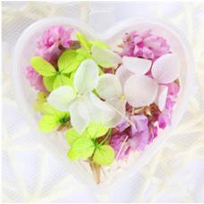 Boite de Fleurs Séchées pour Globe Fiole 5g