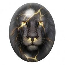 Cabochon en Verre Illustré Lion 30x40mm