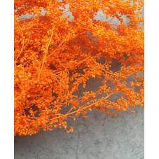 1 Sachet de Fleurs Séchées Orange pour Globe et Fiole