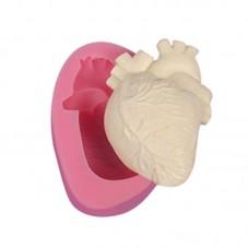 Moule en Silicone Organe Coeur Savon Fimo Résine Gâteau