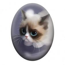 Cabochon en Verre Illustré Chat Grumpy Cat 13x18, 18x25 ou 30x40mm pour la Création de Bijoux Fantaisie - DIY