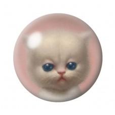 Cabochons en Verre Illustré Chat Étrange 18, 20, 25mm