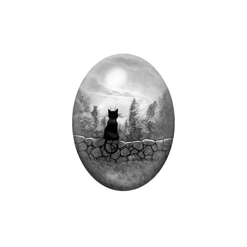 Cabochon en Verre Illustré Chat Lune Noir & Blanc 30x40mm