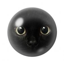 Cabochon en Verre Illustré Tête de Chat 12 à 25mm pour la Création de Bijoux Fantaisie - DIY