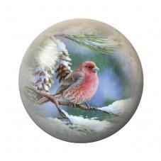 Cabochon en Verre Illustré Oiseau Hiver Neige Noël 12 à 25mm
