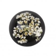 Cabochon en Verre Véritables Fleurs Séchées Fond Noir 20mm pour la Création de Bijoux Fantaisie - DIY