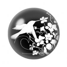 Cabochons en Verre Illustré Oiseau Colibri Noir et Blanc 25mm pour la Création de Bijoux Fantaisie - DIY