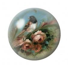 Cabochon en Verre Illustré Oiseau Vintage 12 à 25mm pour la Création de Bijoux Fantaisie - DIY