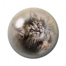 Cabochon en Verre Illustré Chat 12 à 25mm pour la Création de Bijoux Fantaisie - DIY