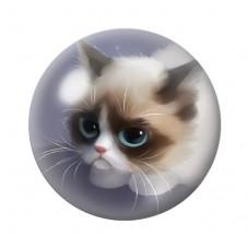 Cabochon en Verre Illustré Chat Grumpy Cat 12 à 25mm pour la Création de Bijoux Fantaisie - DIY