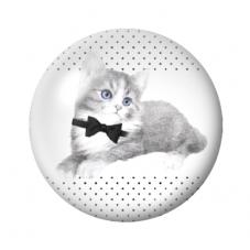 Cabochon en Verre Illustré Chat12 à 25mm pour la Création de Bijoux Fantaisie - DIY