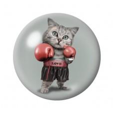 Cabochon en Verre Illustré Chat Boxeur 12 à 25mm pour la Création de Bijoux Fantaisie - DIY