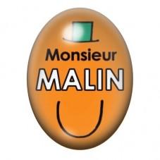 Cabochon en Verre Illustré Monsieur Malin 13x18 ou 18x25mm pour la Création de Bijoux Fantaisie - DIY