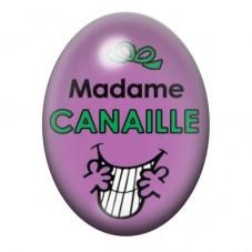 Cabochon en Verre Illustré Madame Canaille 13x18 ou 18x25mm pour la Création de Bijoux Fantaisie - DIY