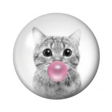 Cabochon en Verre Illustré Chat Bubble Gum 12 ou 20mm pour la Création de Bijoux fantaisie - DIY