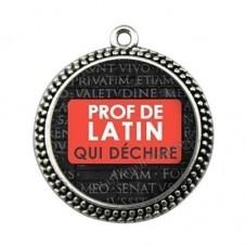 """Pendentif Cabochon en Résine """"Prof de Latin qui Déchire"""" 25mm pour la Création de Bijoux Fantaisie - DIY"""