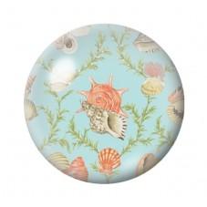 Cabochon en Verre Illustré Coquillages Mer Été 12 à 25mm pour la Création de Bijoux Fantaisie - DIY