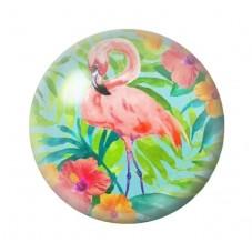 Cabochon en Verre Illustré Exotique Flamant Rose 12 à 25mm