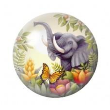 Cabochon en Verre Illustré Exotique Eléphant 12 à 25mm pour la Création de Bijoux Fantaisie - DIY