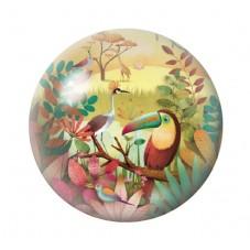 Cabochon en Verre Illustré Exotique Toucan 12 à 25mm pour la Création de Bijoux Fantaisie - DIY