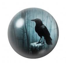 Cabochon en Verre Illustré Corbeau Gothique 12 à 25mm pour la Création de Bijoux Fantaisie - DIY