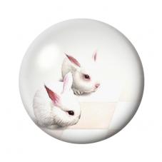 Cabochon en Verre Illustré Lapins Blancs 12 à 25mm pour la Création de Bijoux Fantaisie - DIY