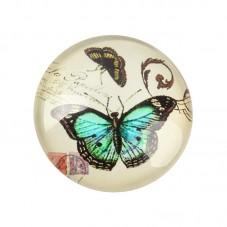 2 Cabochons en Verre Illustrés Papillon 12mm pour la Création de Bijoux Fantaisie - DIY