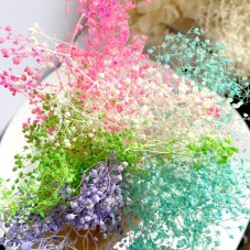 Gros Sachet de Fleurs Séchées pour Globe Fiole 5g